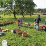 projekt Jablkobraní - 8.9. 2017 063