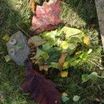 Výtvarná výchova v přírodě - 4. a 5. ročník - 16.10. 2018 066