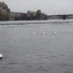 Advent v Praze (50)