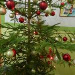 Vánoční besídka, jarmark - 13.12. 2018 059