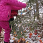 Zdopbení stromečku v lese - 20.12. 2018 445