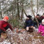 Zdopbení stromečku v lese - 20.12. 2018 446